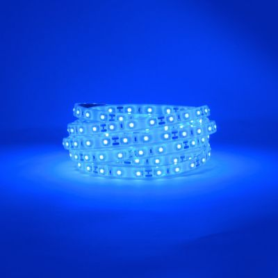 ProFlex Blue LED Strip 12V 24W IP67